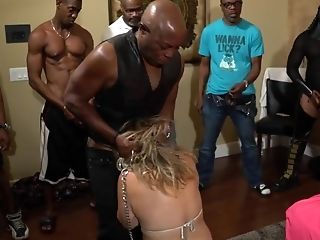 Horny Inexperienced Unsorted, Deep Jaws Pornography Clip